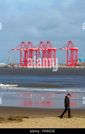 Liverpool_Docks and Wharfs and new container cranes in position on the River Mersey, UK - Stock Photo