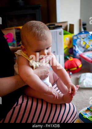 Young six month baby boy sitting on mothers lap, UK. - Stock Photo