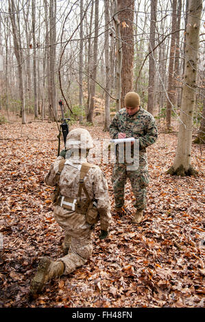 Candidates assigned to Delta Company, Officer Candidates Class-221, are evaluated as members of a fire team during - Stock Photo