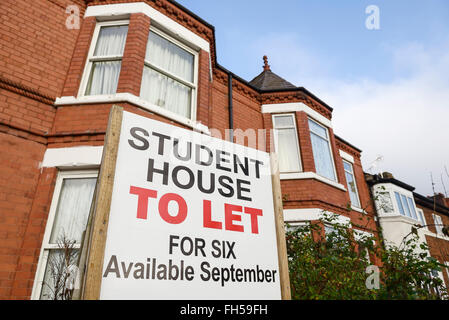 Student House To Let sign outside a house - Stock Photo