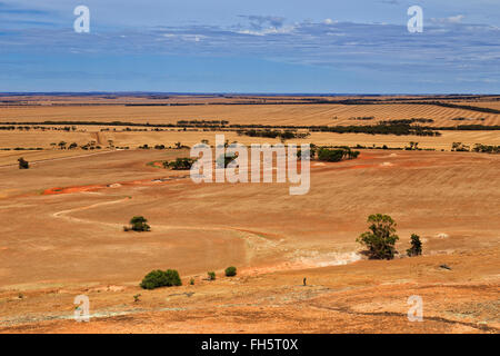 yellow cropped farm fields in South Australia elevated view from the top of granite mount near Wudinna - Stock Photo