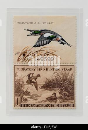 Vintage Migratory Bird Hunting Stamp $1 Baldtapes stamp, circa 1942 - USA - Stock Photo