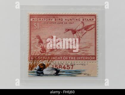 Vintage $1 Migratory Bird Hunting Stamp - USA - Stock Photo