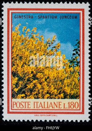 1969 - Italian mint stamp issued to commemorate the Ginestra plant Lire 180 - Stock Photo