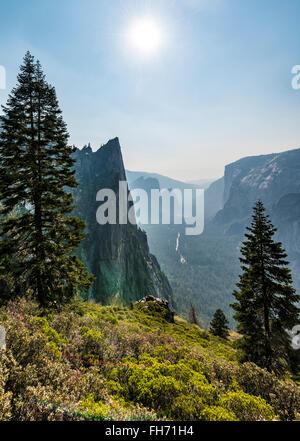 View into Yosemite Valley, Taft Point, El Capitan, Yosemite National Park, California, USA - Stock Photo