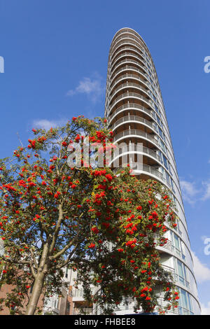 The Oval Modern Residential Building On Dalmannkai And