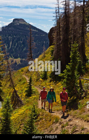HIKERS walking near LOBO POINT, elevation 7060 feet,  on the Continental Divide - SOUTHERN COLORADO MR - Stock Photo