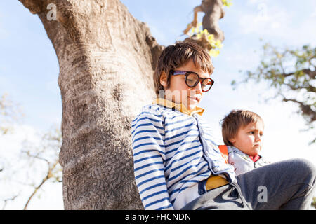 Two little boys playing in a tree - Stock Photo