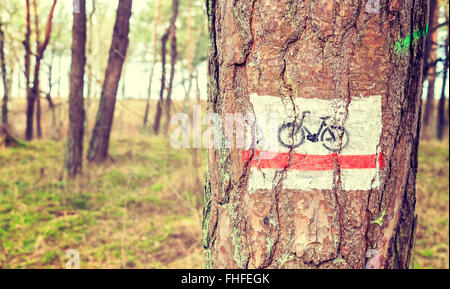 Retro toned bike trail sign painted on a tree in forest. - Stock Photo