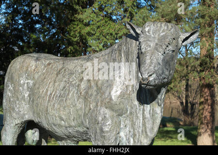 Builth Wells Powys Wales - life sized bronze sculpture of a Welsh Black bull by artist Gavin Fifield - Stock Photo