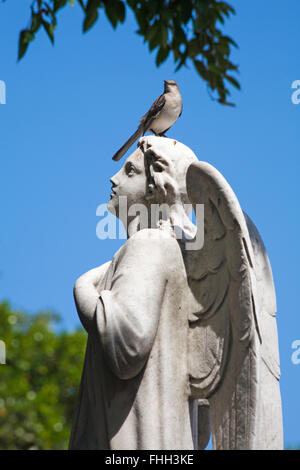 Statue sculpture on grave at Colon Cemetery, Havana, Cuba, West Indies, Caribbean, Central America - bird standing - Stock Photo