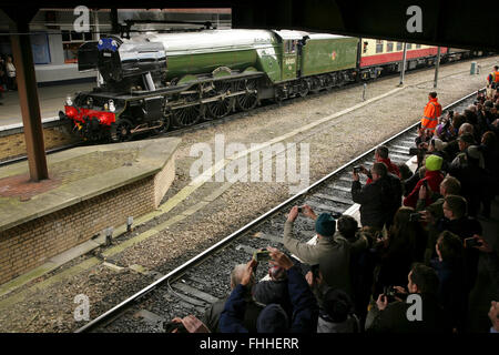 "York railway station, UK, 25 February 2016. The newly restored LNER A3 class locomotive ""Flying Scotsman"" arrives - Stock Photo"