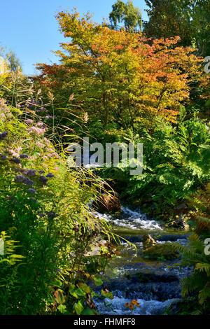 Stream in rock garden, Royal Botanic Garden, Edinburgh, Scotland, UK - Stock Photo