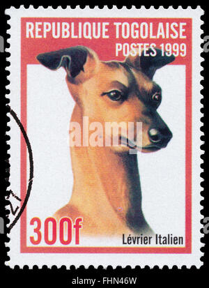 BUDAPEST, HUNGARY - 21 february 2016: a stamp printed  in Togo shows Italian Greyhound, circa 1999 - Stock Photo