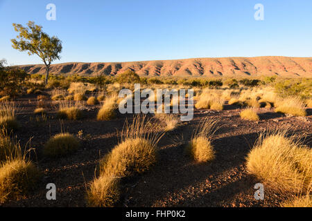 View of the West MacDonnell Ranges, Northern Territory, NT, Australia - Stock Photo