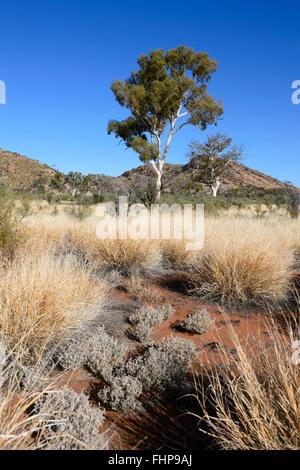 Larapinta Drive, West MacDonnell Ranges, Northern Territory, NT, Australia - Stock Photo