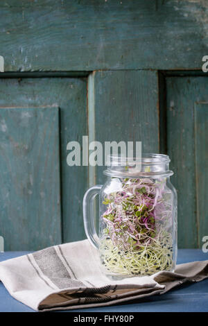Healthy diet. Fresh Garlic and Radish Sprouts in glass mason jar standing on kitchen towel over blue wooden table. - Stock Photo