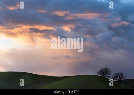 Stormy - Stock Photo