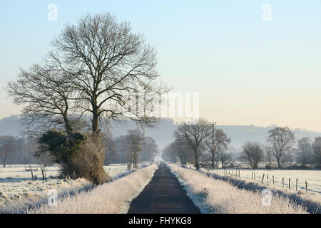 A long country road leading through the Somerset Levels on a frosty winter morning. - Stock Photo