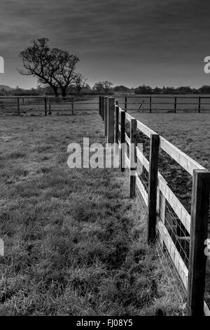 Cheshire countryside in black and white - Stock Photo