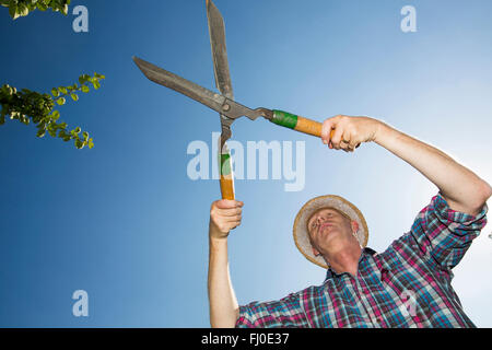 Allotment gardener with hedge trimmer in front of blue sky - Stock Photo