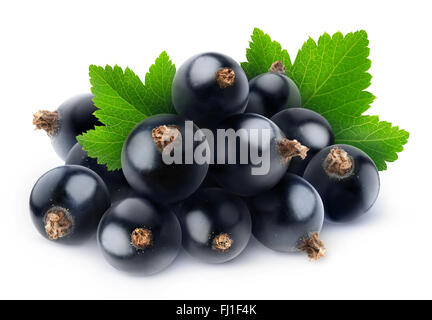 Pile of fresh black currants isolated on white with clipping path - Stock Photo