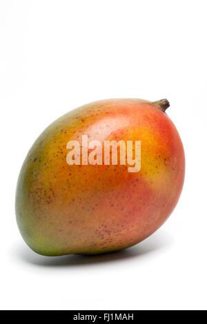 Fresh ripe single mango on white background - Stock Photo