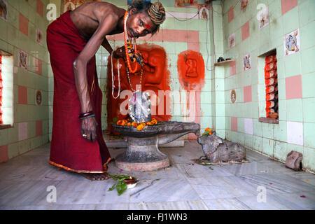 Portrait of Indian man sadhu in temple with Shiva Lingam in Hindu holy city Varanasi, India - Stock Photo