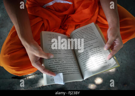 Buddhist monk reading in monastery  in Luang Prabang , Laos, Asia - Stock Photo