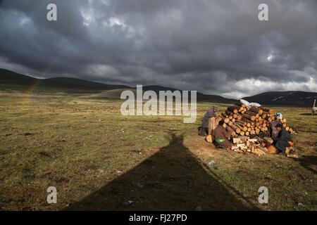 Mongolia Tsaatan nomads - reindeer people -  tribe -  people living with reindeer in Central Asia - Stock Photo