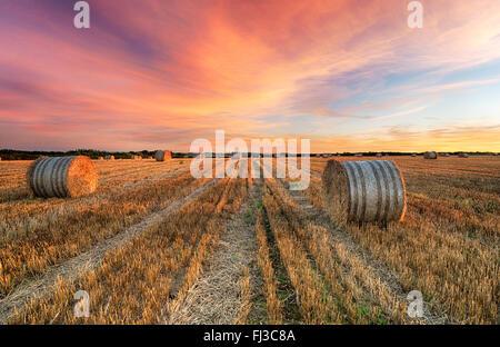 Stunning sunset over hay bales near Crantock in Cornwall - Stock Photo