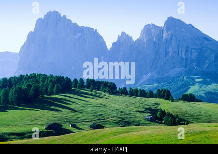 view from Seiser Alm to Plattkofel and Langkofel Group, Italy, South Tyrol, Dolomites - Stock Photo