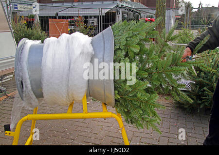 Attractive Christmas Tree Netting Machine, Germany   Stock Photo