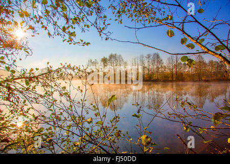 midday sun over a pond in autumn, Germany, Bavaria, Niederbayern, Lower Bavaria, Atting - Stock Photo