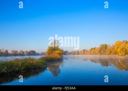 mist over a pond in autumn, Germany, Bavaria, Niederbayern, Lower Bavaria, Atting - Stock Photo