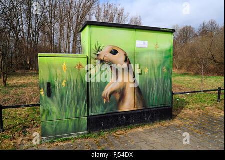 ground squirrels, susliks, sousliks (Citellus spec., Spermophilus spec.), painted on a power distribution board, - Stock Photo