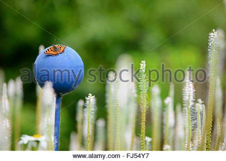 small tortoiseshell (Aglais urticae, Nymphalis urticae), on a garden decoration, Germany - Stock Photo