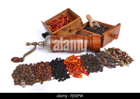 pepper mill with different kinds of pepper: pimento, Szechuan pepper, Tasmanian pepper, chili pepper, cubeb pepper, - Stock Photo