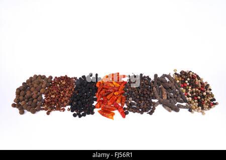 different kinds of pepper: pimento, Szechuan pepper, Tasmanian pepper, chili pepper, cubeb pepper, long pepper, - Stock Photo