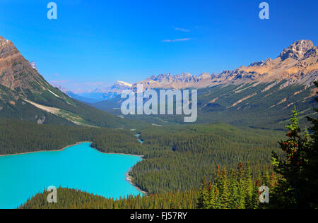 Peyto Lake with turquoise blue water, Rocky Mountains, Canada, Alberta, Banff National Park - Stock Photo