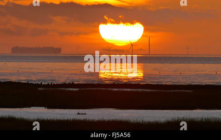 wadden sea near Spieka Neufeld at sunset, car ferry on the Weser, Germany, Lower Saxony, Spieka Neufeld - Stock Photo