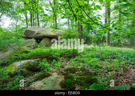 megalithic tomb Bischofsbrueck, Germany, Lower Saxony, Peheim, Molbergen - Stock Photo
