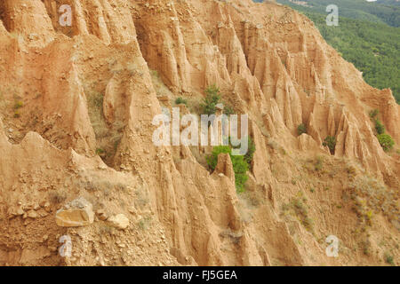 sandstone pyramids of Stob, Bulgaria, Kapatishkiya, Naturpark Rila-Kloster - Stock Photo