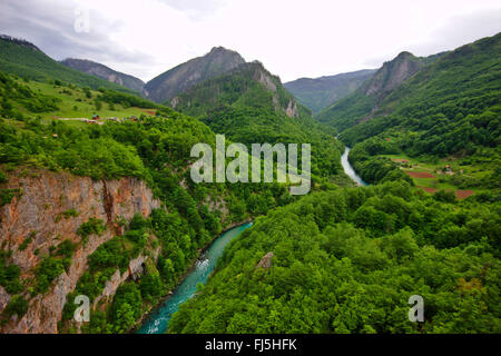 view from Tara bridge to Tara River Canyon, longest and deepest canyon in Europe, Montenegro, Durmitor National - Stock Photo