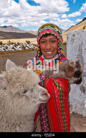 alpaca (Lama pacos, Vicugna pacos), Peruvian boy in traditional clothing with alpacas portrait of a child, Peru, - Stock Photo