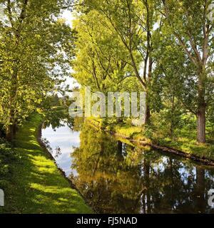 trees along the Niers, Germany, North Rhine-Westphalia, Lower Rhine, Weeze - Stock Photo