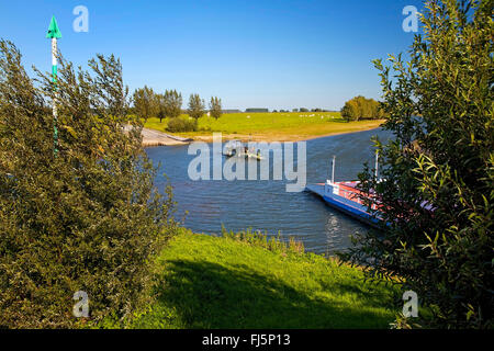 bicycle ferry at the Griethauser Old Rhine near Dueffelward, Germany, North Rhine-Westphalia, Lower Rhine, Cleves - Stock Photo