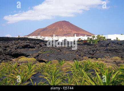 Lava and overview of the village. Tahiche, Lanzarote island, Canary Islands, Spain. - Stock Photo
