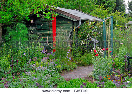 rural garden and garden shed, Germany - Stock Photo