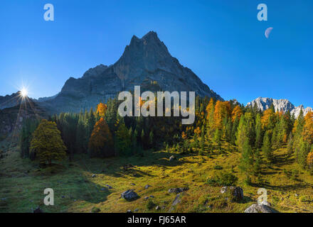 view over the Large Ahornboden in direction of the Eiskarlspitze group at sunrise, Austria, Tyrol, Karwendel Mountains - Stock Photo
